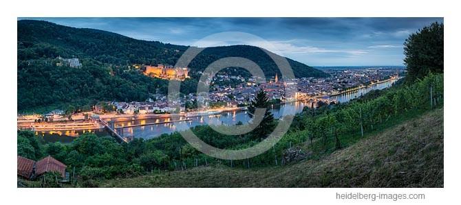 Archiv-Nr. hc2014150 | Blick über die Weinberge auf die Heidelberger Altstadt u. Schloss