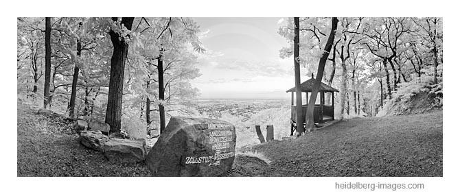 Archiv-Nr. h2011115 | Fuchsrondel