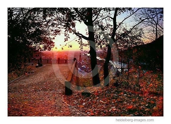 Archiv-Nr. hc2008135 / Herbststimmung auf dem Schloss