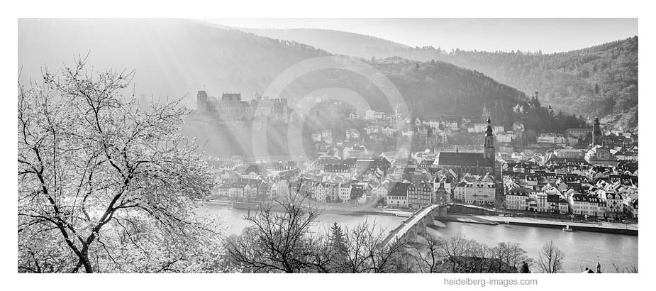 Archiv-Nr. h2014124   Heidelberg, Morgennebel über der Altstadt