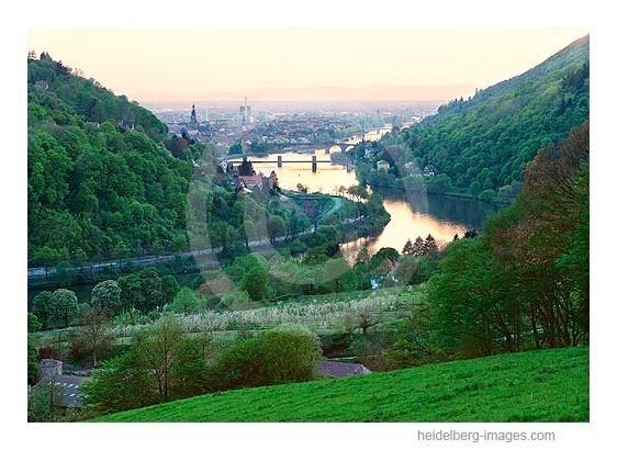 Archiv-Nr. hc2000127 | Blick vom Köpfel in die Rheinebene