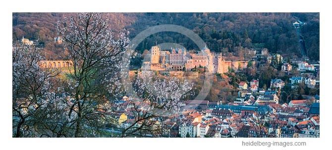 Archiv-Nr. hc2014117 / Frühlingsblüten vor dem Schloss