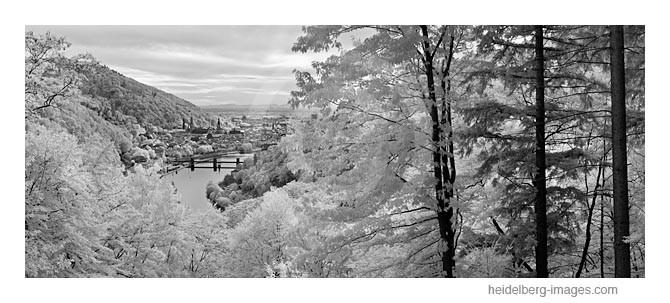 Archiv-Nr. h2011142 | Blick vom Haarlasweg auf Heidelberg