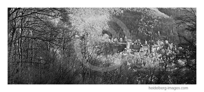 Archiv-Nr. h2012112 / Blick vom Heiligenberg auf das Schloss