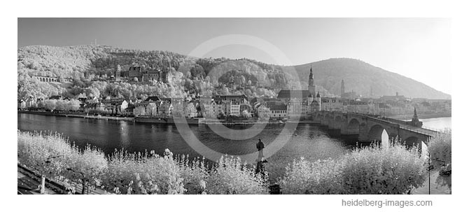 Archiv-Nr. h2012178   Heidelberg, Altstadtansicht