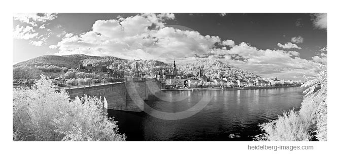 Archiv-Nr. h2011127 | Heidelberg, Alte Brücke