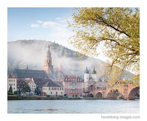 Archiv-Nr. hc2014163 | Herbstlaub und Heidelberger Altstadt