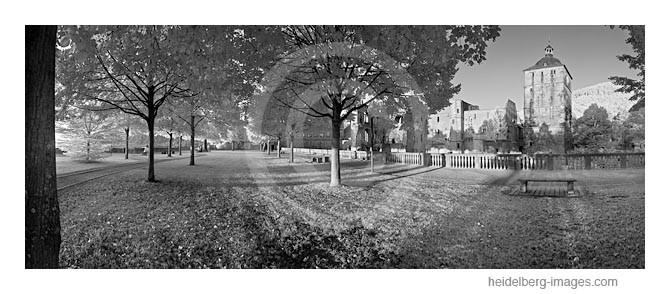 Archiv-Nr. h2010169 | Schlossgarten