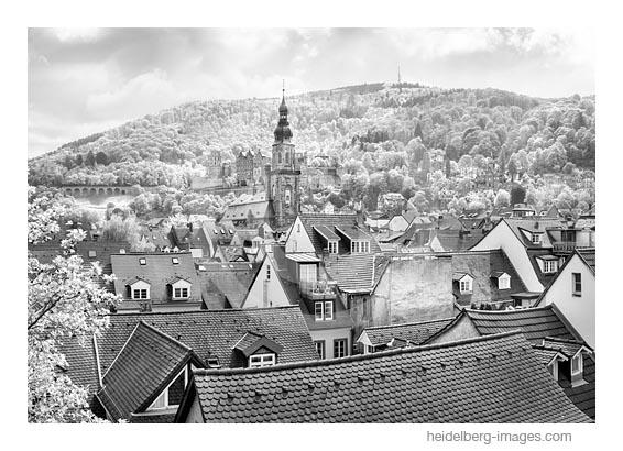 Archiv-Nr. h2019122 | Morgenlicht auf der Heiliggeistkirche