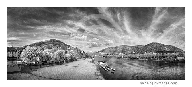 Archiv-Nr. h2016113   Neckarufer mit Blick auf Heidelberg