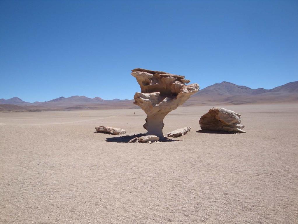 Arbol de piedra, Bolivien