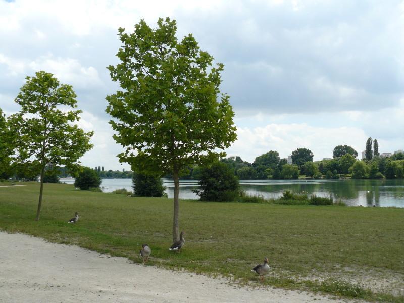 Pause in einem Park ausserhalb von Dijon