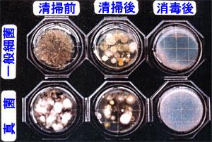 きれいに見える空調ダクト内部で細菌検査をした結果、多くの細菌が蔓延している写真