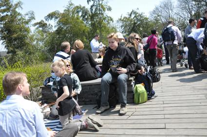 Der gelungene Gemeindeausflug wurde mit einem gemeinsamen Picknick abgerundet