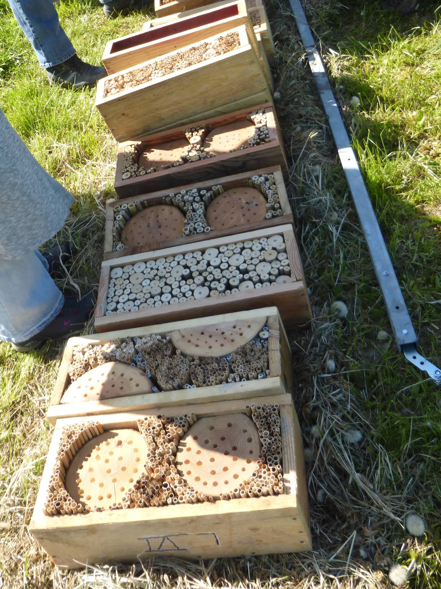 Die Einzelteile des Insektenhotels wurden vor Ort zusammengebaut...