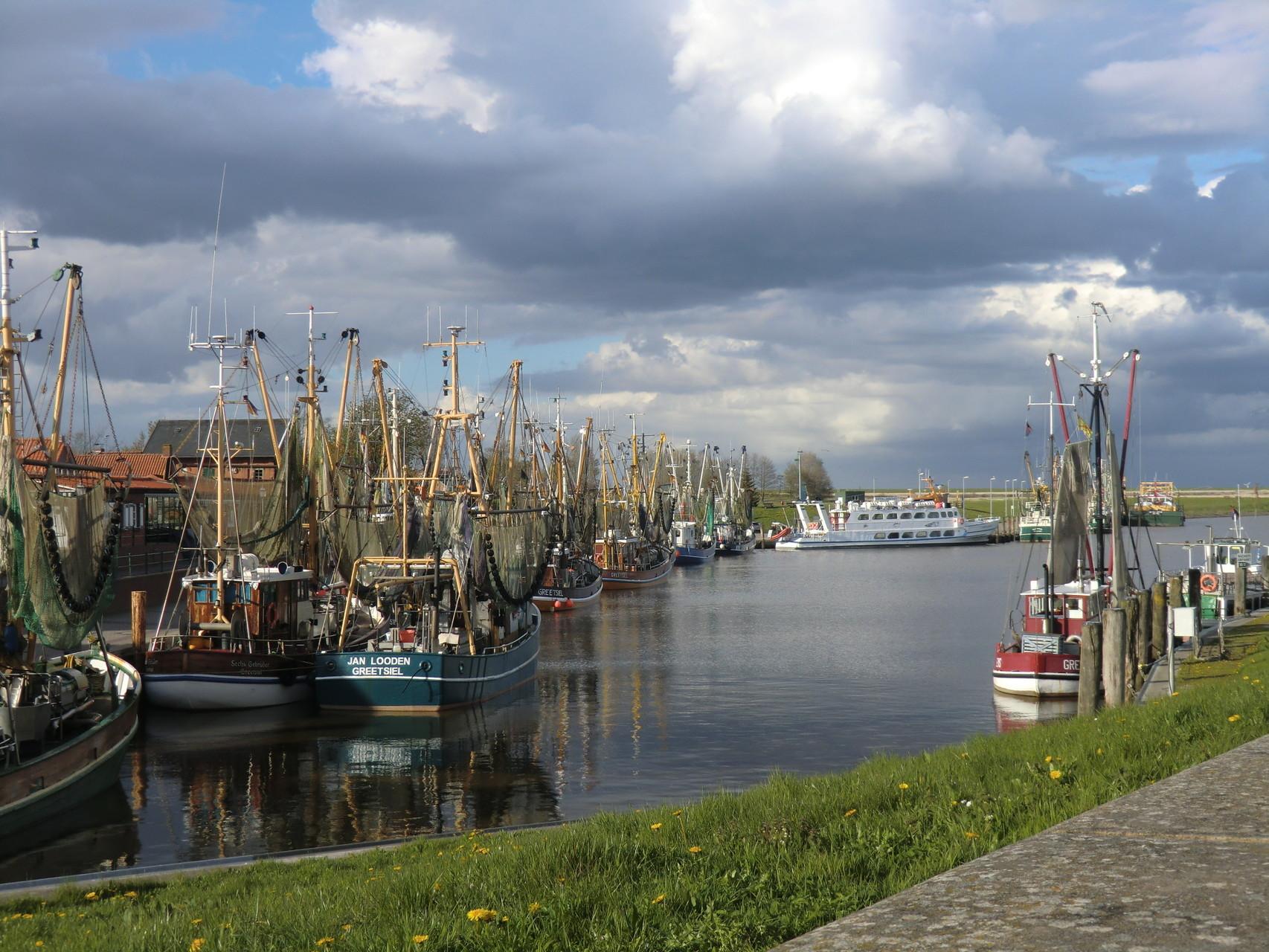 Hafen mit vielen Fischerbooten