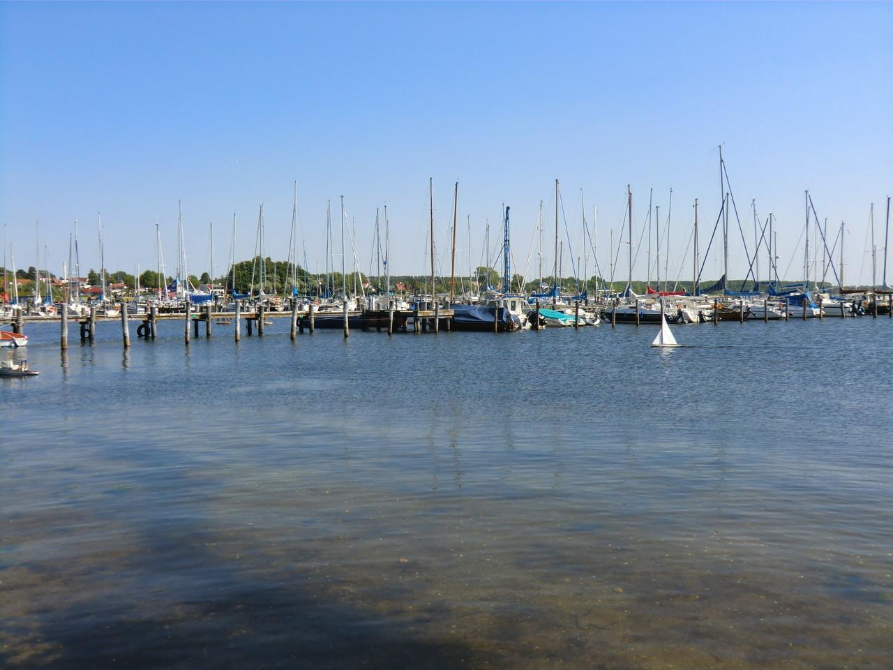 Hafen Salzhaff