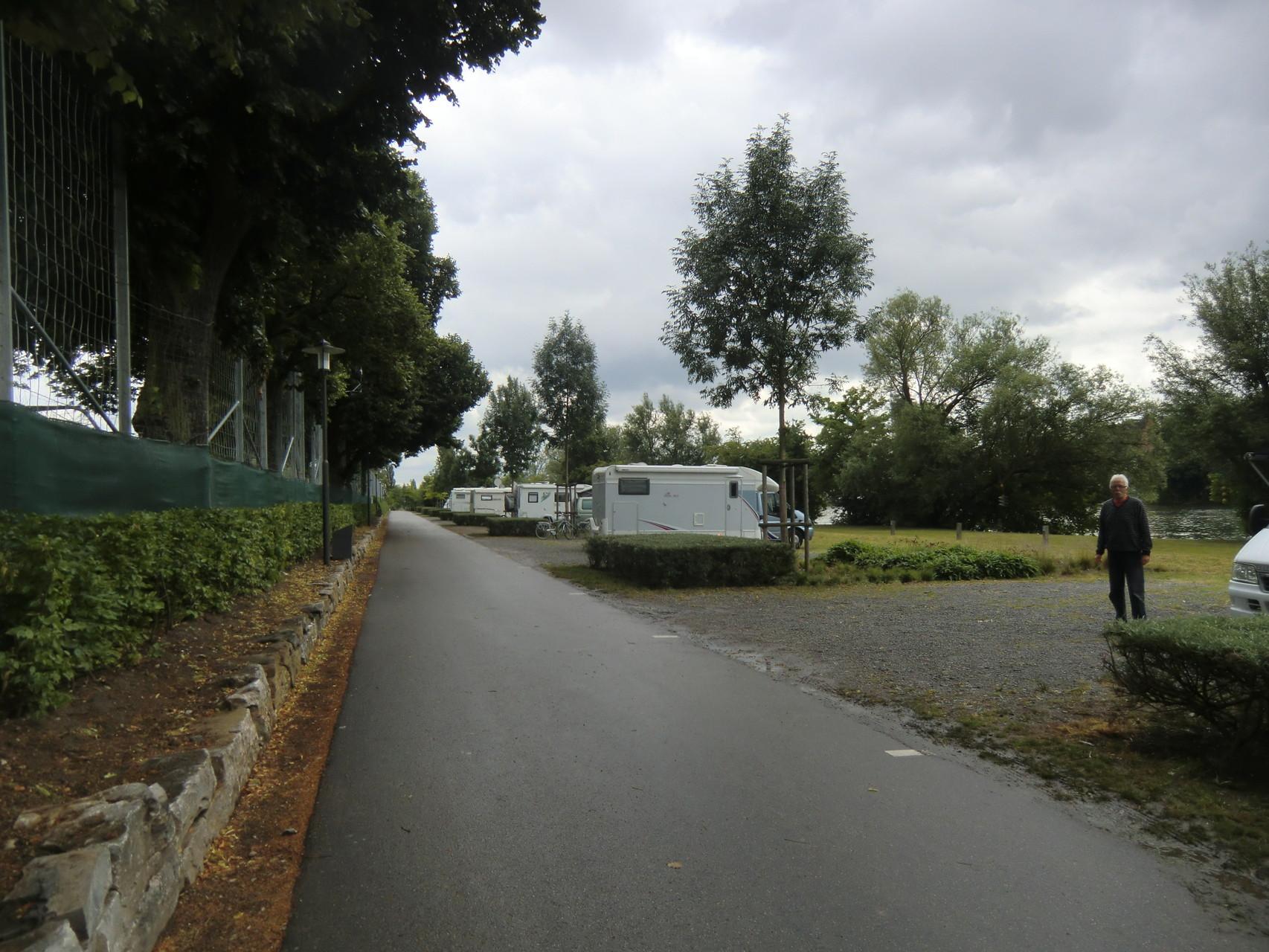 Stellplätze entlang des Main hinter Bäumen und Sträuchern