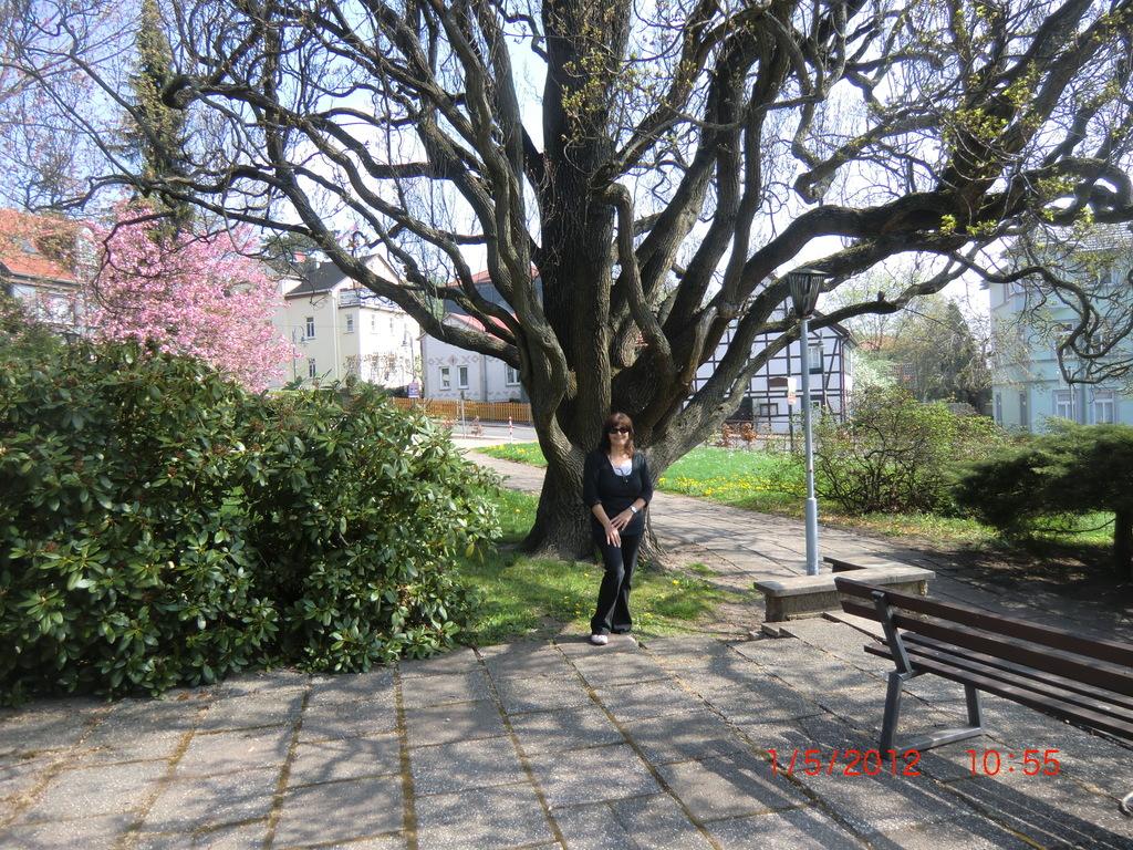 3. Ziel:  Friedrichroda - Park