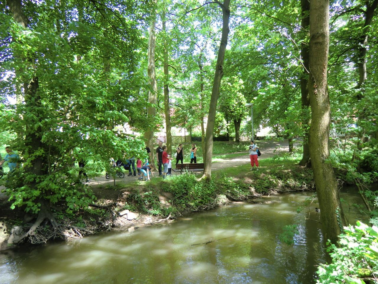 Park in Volkach