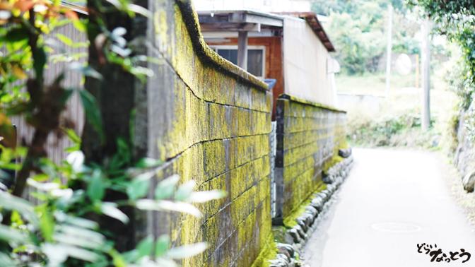 フォルッツァ富士宮工場横の路地