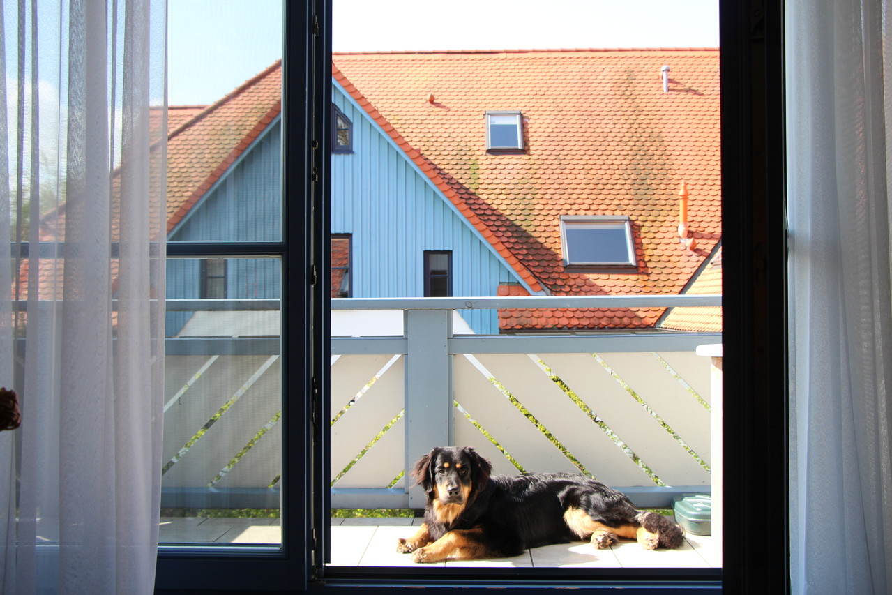 Ausruhen auf dem Balkon