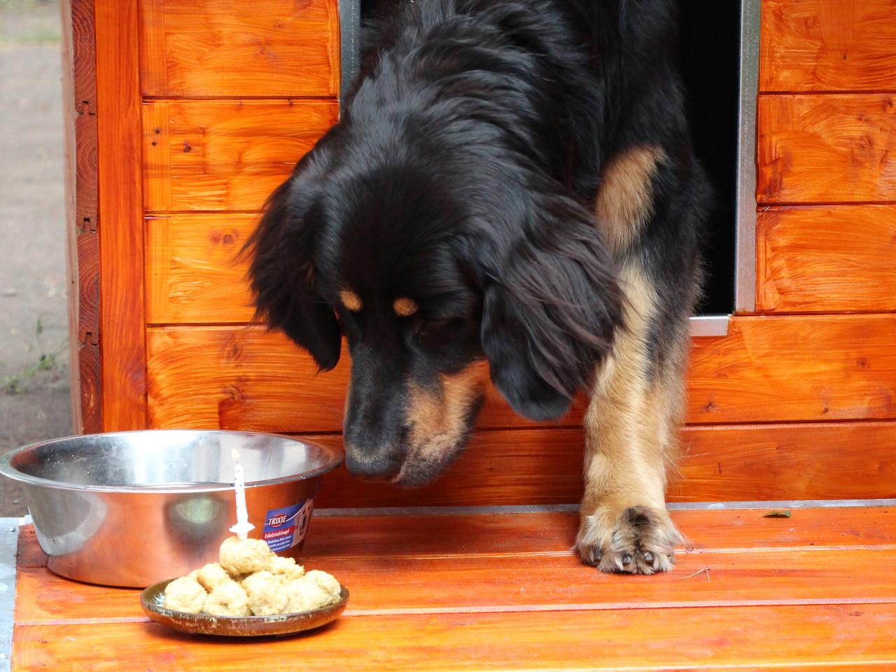 Und diese Kerze soll ich auspusten?!