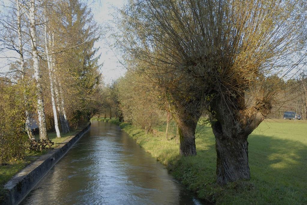 Einige Abschnitte des Almkanals sind geschützt.