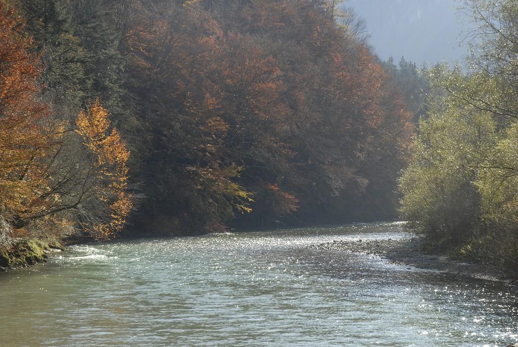 Die Königsseeache vor der Abzweigung des Almkanals.