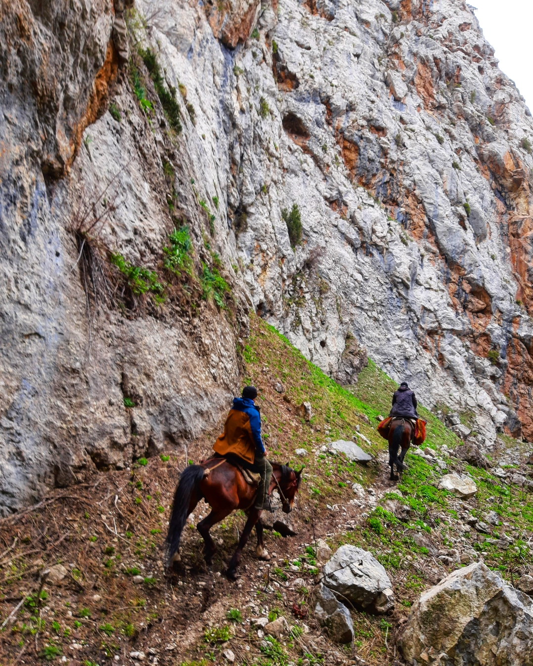 Trekking and Horse Riding in the Southern Kyrgyz mountains