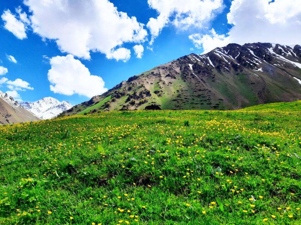 Trekking route to the mountain