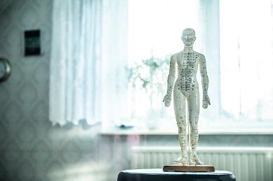 meridiane und faszien auf figur für Osteopathie