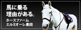 愛知・豊田の乗馬クラブ…エルミオーレ豊田