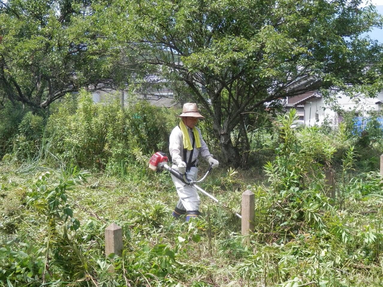 畑仕事も雑草刈りもおまかせ! 頼りになります本村副理事長