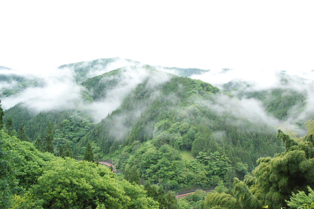 民宿より見る山並み風景 -12