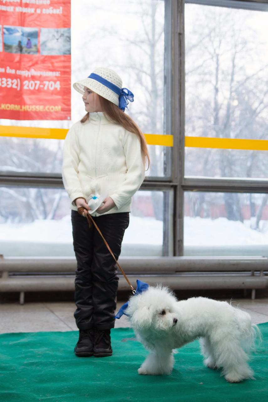 "конкурс костюмов ""Ребенок и собака"""