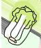 Vegetable Lunch喜坊(シーファン)の営業時間