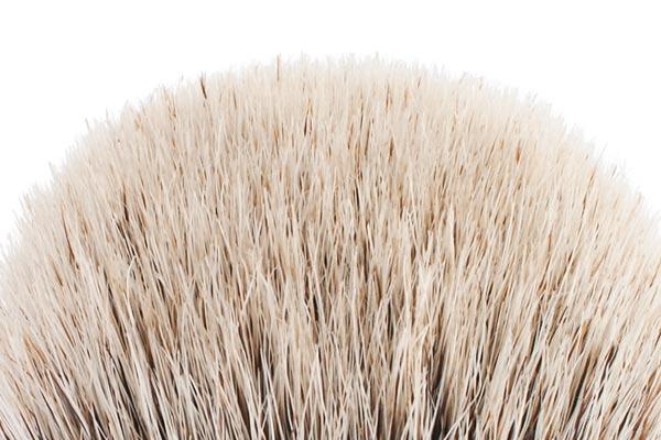 silvertip (poils argentés ou blancs)