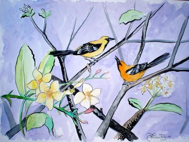 """Flor de Mayo, 2005"" 40 x 50 cm."