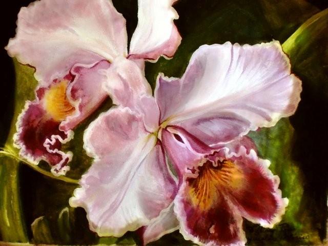 """Orquídea catteya 1, 2011"" 30 x 40 cm."
