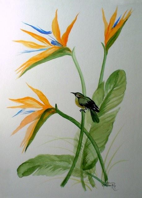 """""""Aves, 2004"""". Acuarela. 40 x 50 cm."""