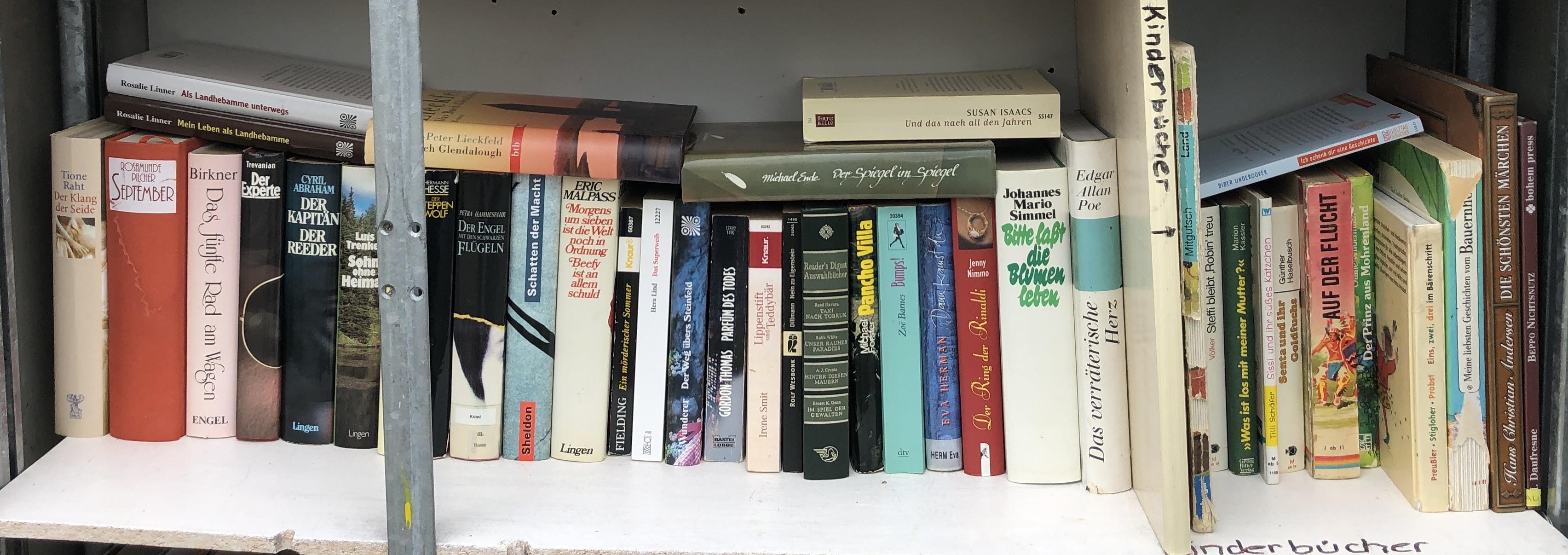 Bücherschrank innen, Bücher mittlere Reihe