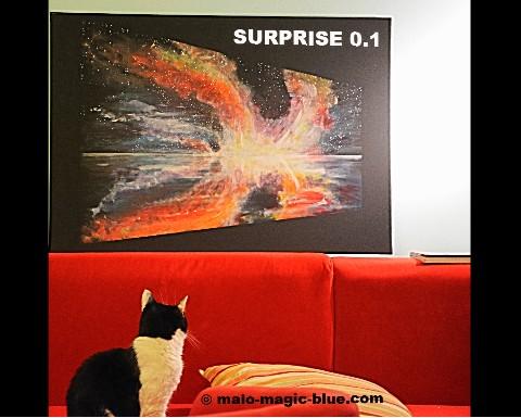 Überraschung gelungen - Trixie beäugt neugierig SURPRISE 0.1