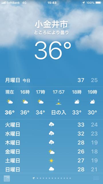 ☆台風一過真夏日にぶり返し。ただいま小金井市15:43。36℃。これから世田谷に出向きます。