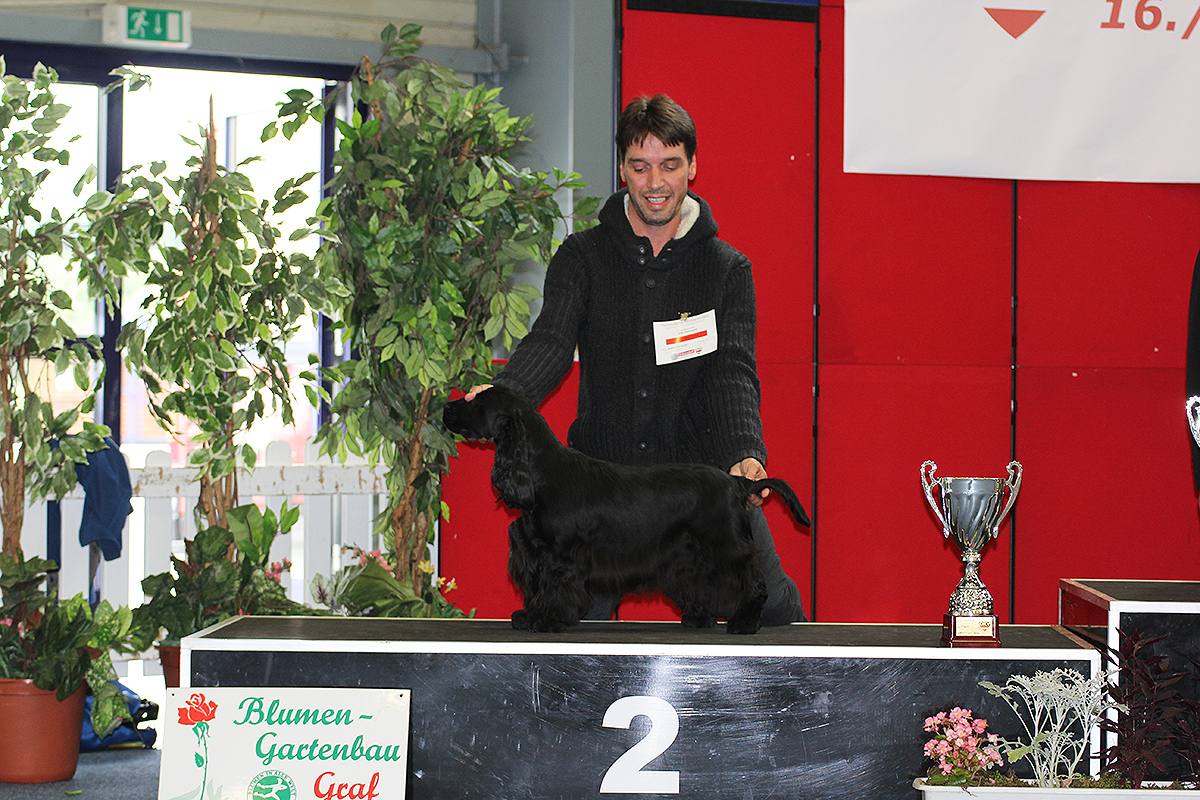 2. Junior-Best in Show auf der IHA Oberwart 2016