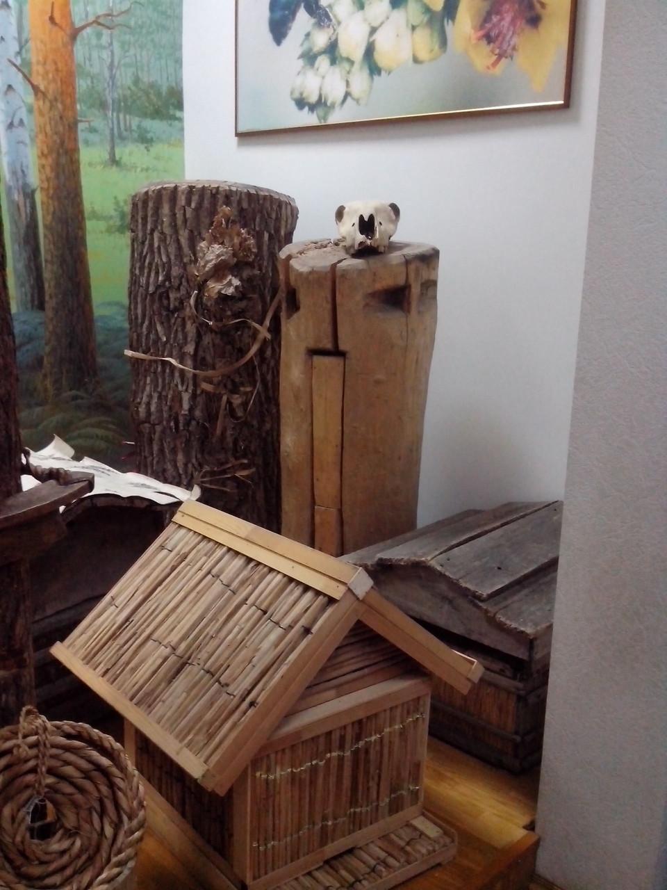 Экспозиция, посвященная бортничеству. Национальный музей Республики Башкортостан