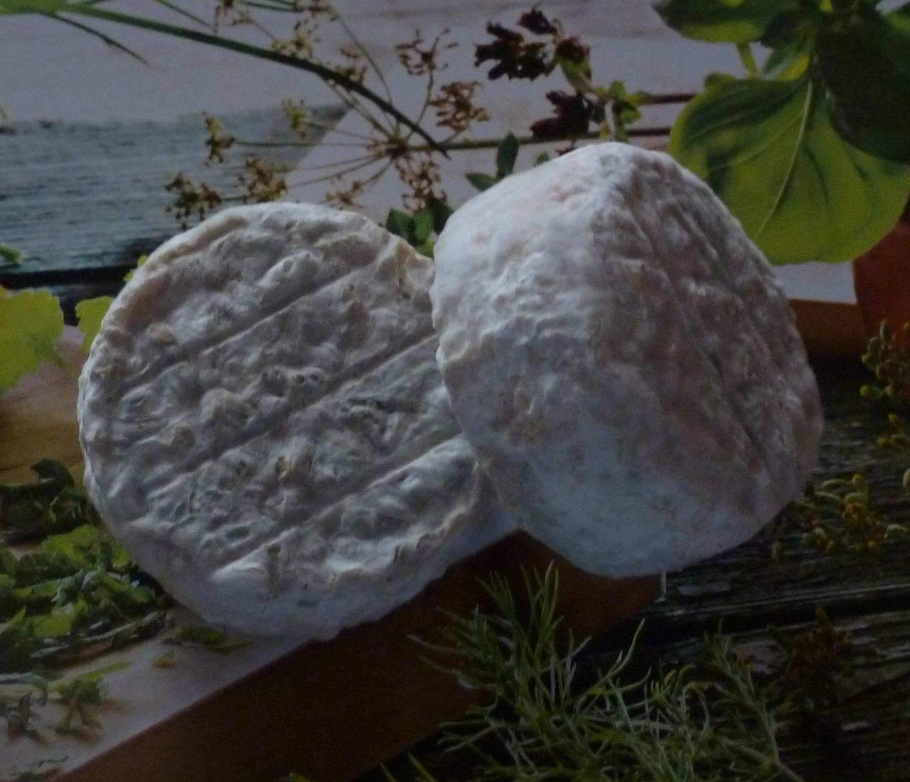 fromage de chèvre fermier Tourom