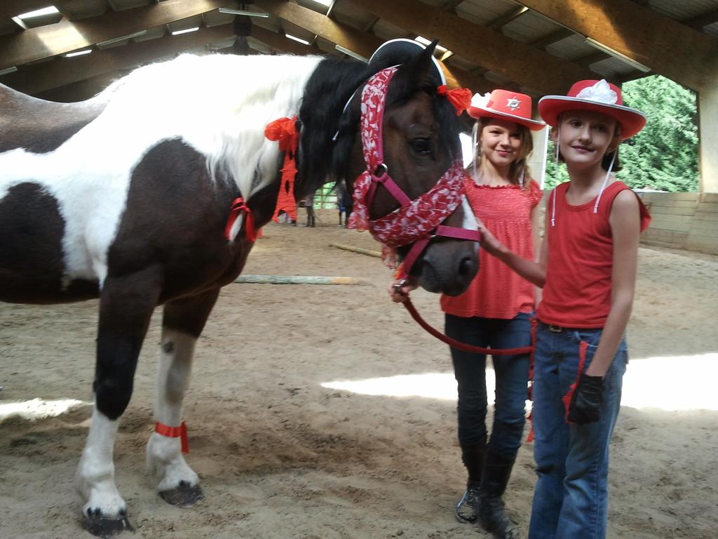 Election du plus beau poney
