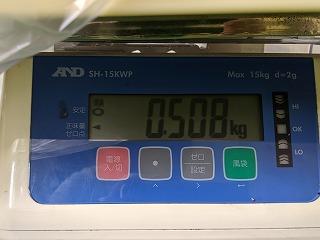 バジル収穫量測定508g