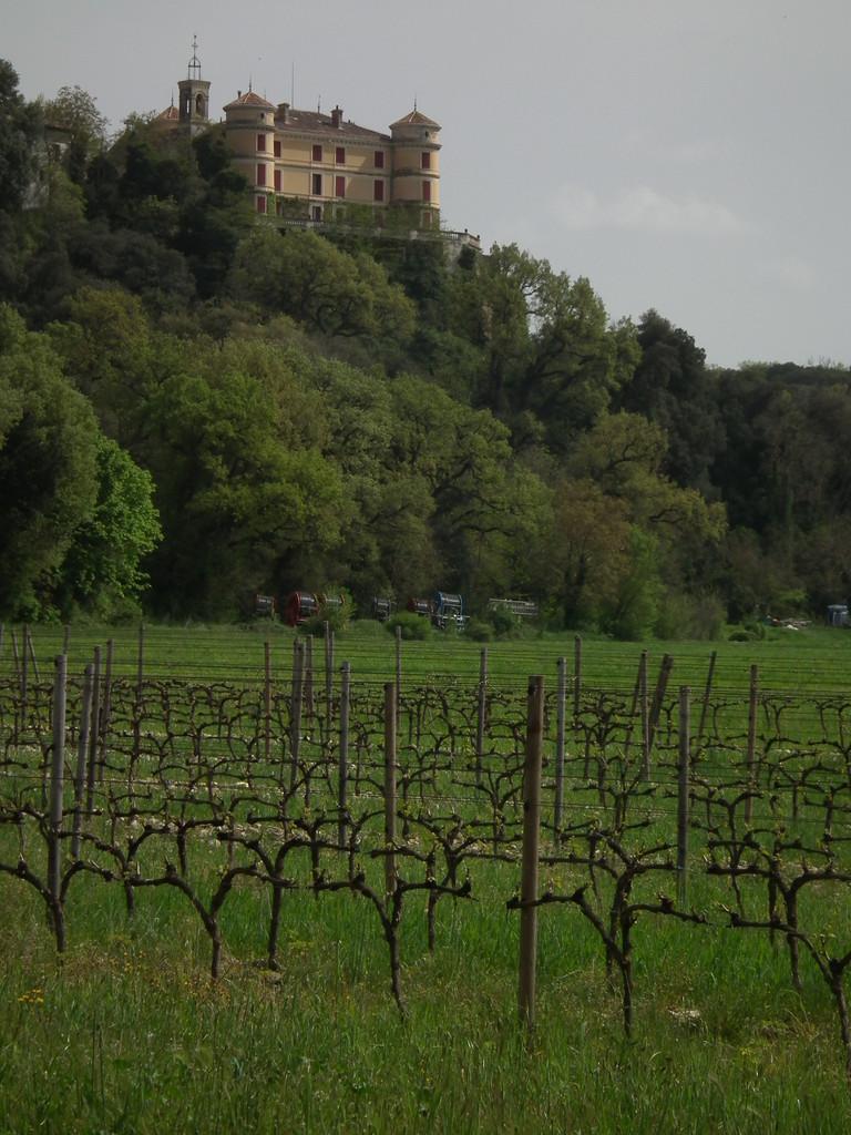 Castillo de Rousset donde compramos vino.